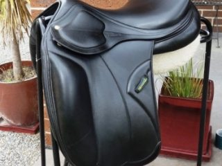 Amerigo Pinerolo Monoflap Dressage Saddle 17'