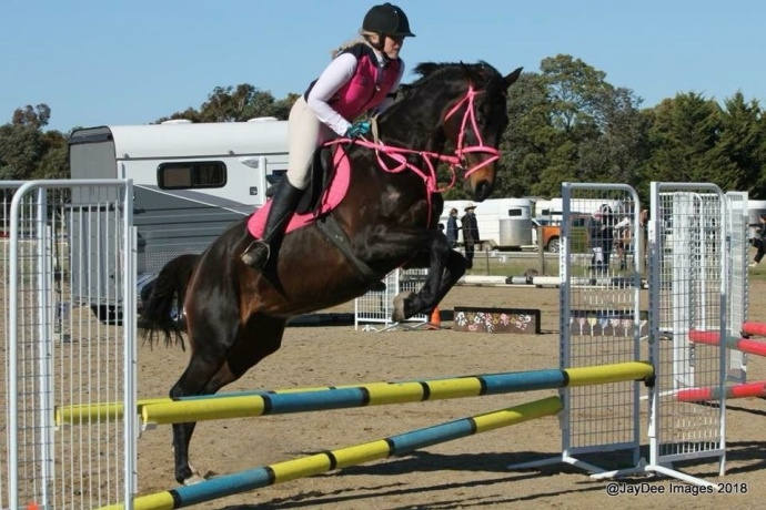Stunning Eventer with Top Potential