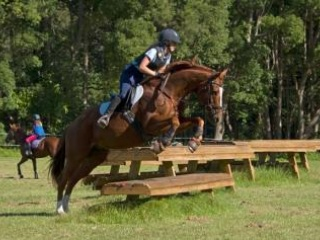 SAFE AND COMPETITIVE SCHOOLMASTER.