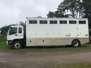 10 straight 9 angle warmblood bays horse truck!