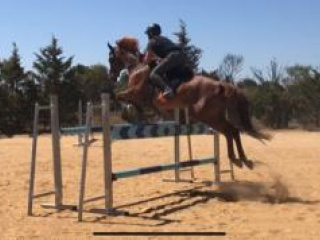 eperianced eventer
