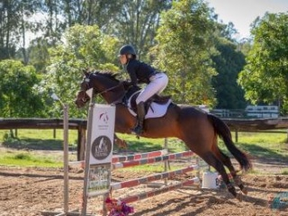 Pony Club Eventing All Rounder
