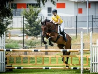 Competitive and Experienced Schoolmaster