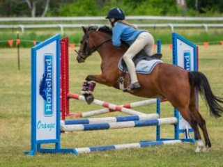 Ultimate competitive child's pony