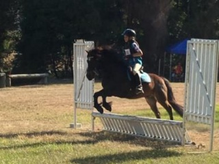 Cracking unflappable lead line or 2nd ridden pony