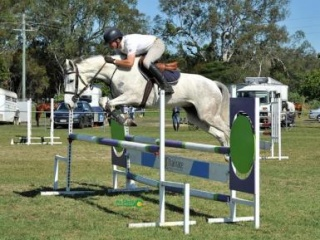Young Showjumper by Quintago from World Cup Family