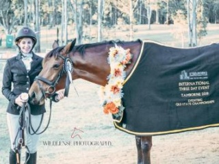 MULTIPLE WINNER in DRESSAGE & EVENTING