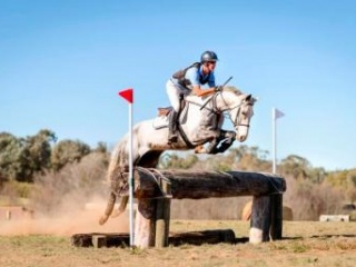 Quality 105cm Eventer with talent to go up