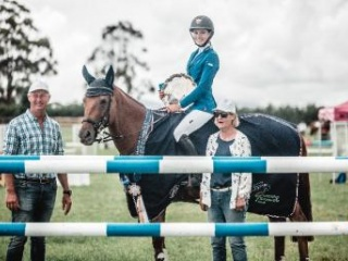 Competitive Showjumping and Eventing Mount