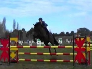 TB Mare Competing 1.10-1.15m