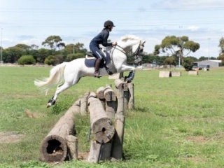 Exceptional Jumping Pony