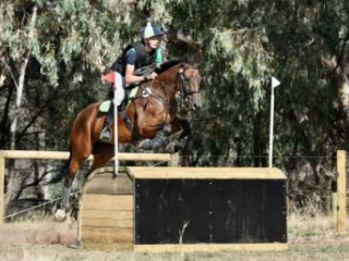 Quiet, competitive eventer