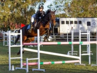 Superstar Showjumper/Eventer