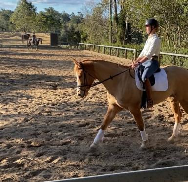 Adult Riding Club in Queensland
