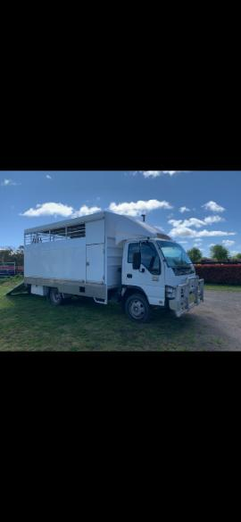 Horse Transport in New South Wales
