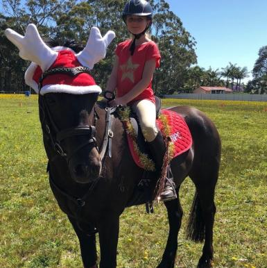 Horses in New South Wales
