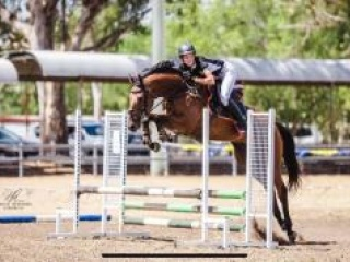 Seriously talented jumping horse
