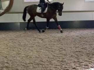 EOI - Eventer with endless potential