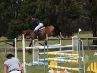 Perfect Interschool Show Jumper PRICE DROPPED