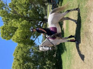 Show Jumping in Queensland