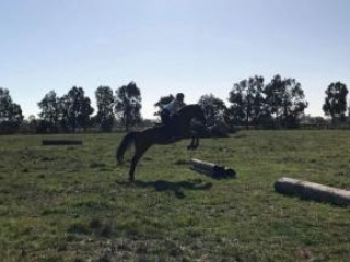 Adult Riding Club in Victoria
