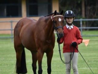 Pony Club in New South Wales