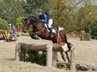 Athletic Performance Mare - SOLD PENDING VET CHECK