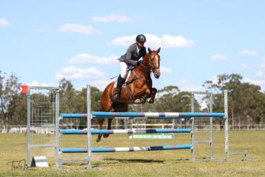 Fantastic Eventing/Showjumping potential