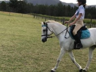 Eventers in New South Wales