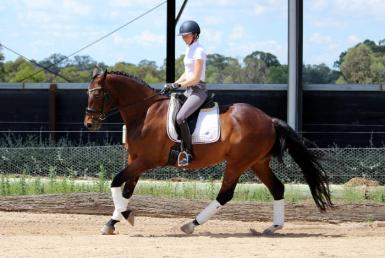 Adult Riding Club in New South Wales
