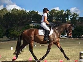 Perfect TB for the allrounder home