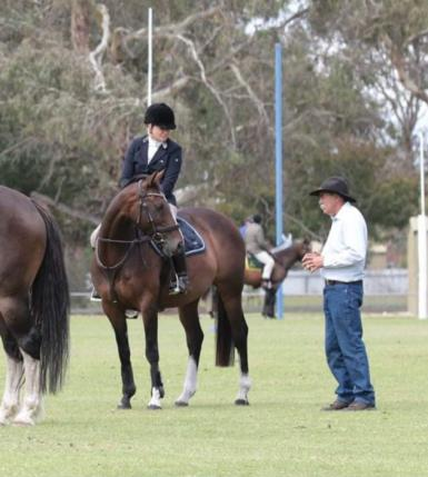 Dressage in Northern Territory