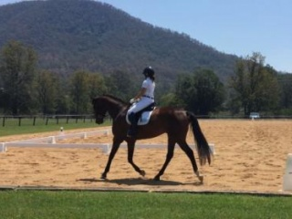 Eventers in Queensland