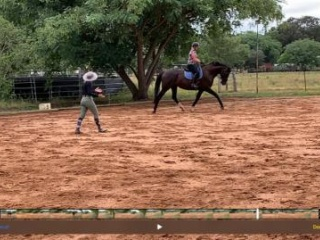 Elementary level Mare 17-3h