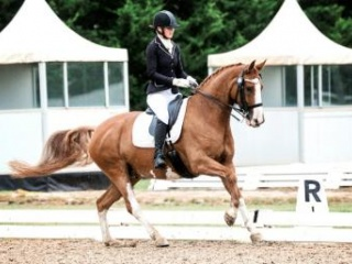 Australia's Next FEI Superstar!